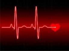 Сердце регулирует энергетический обмен всего организма