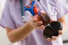 От здоровья сердца матери зависит пол младенца