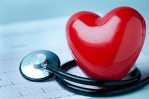 Мир отмечает День сердца: 35 поразительных фактов о «моторе» организма