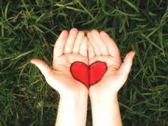 Анализ эхокардиографии сердца