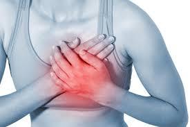 Ученые: после инфаркта сердечная мышца может быть восстановлена благодаря лимфатической системе