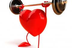 Сердце имеет собственную иммунную систему