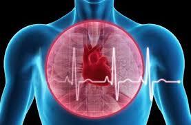 Спортивное сердце: причины, симптомы, диагностика, лечение