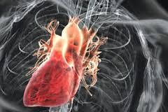 Патология клапанов сердца: причины, симптомы, диагностика, лечение