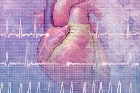 Фибрилляция предсердий (мерцательная аритмия): причины, симптомы, диагностика, лечение