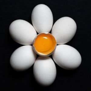 Поедание куриных яиц не вызывает болезней сердца