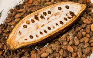 Открытие: вкусное лакомство заменит гипертоникам лекарство
