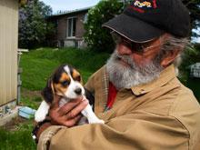 Собаки эффективно борются с негативными проявлениями давления у человека