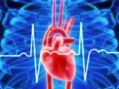 Сердцебиение – где грань между нормой и болезнью