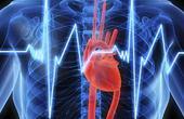 Магний для лечения учащенного сердцебиения
