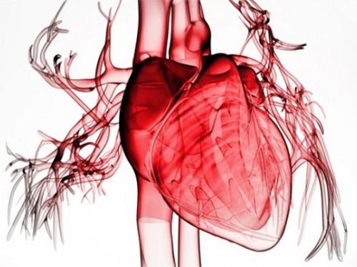 Повторный инфаркт в течение 4 лет после первого переживает каждый четвертый пациент