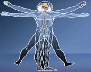 Гипертония: новый имплантат эффективнее лекарств