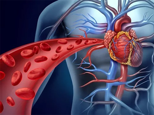 После инфаркта пациенты начинают охотнее слушаться врачей