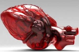 Ученые разработали материал для изготовления искусственного сердца