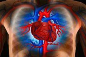 В ишемической болезни сердца виноваты гены?