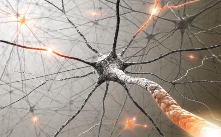Рассеянный склероз. Клиническая картина
