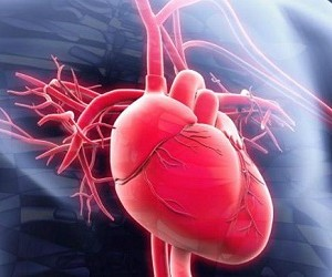 10 лучших продуктов для здоровья сердца