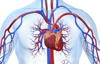 Как понять, что у вас ишемическая болезнь сердца?