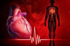 Причины и способы лечения аритмии