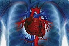 Симптомы при врожденных и приобретенных пороках сердца