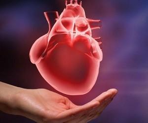 Медики рассказали, как ежедневно заботиться о сердце