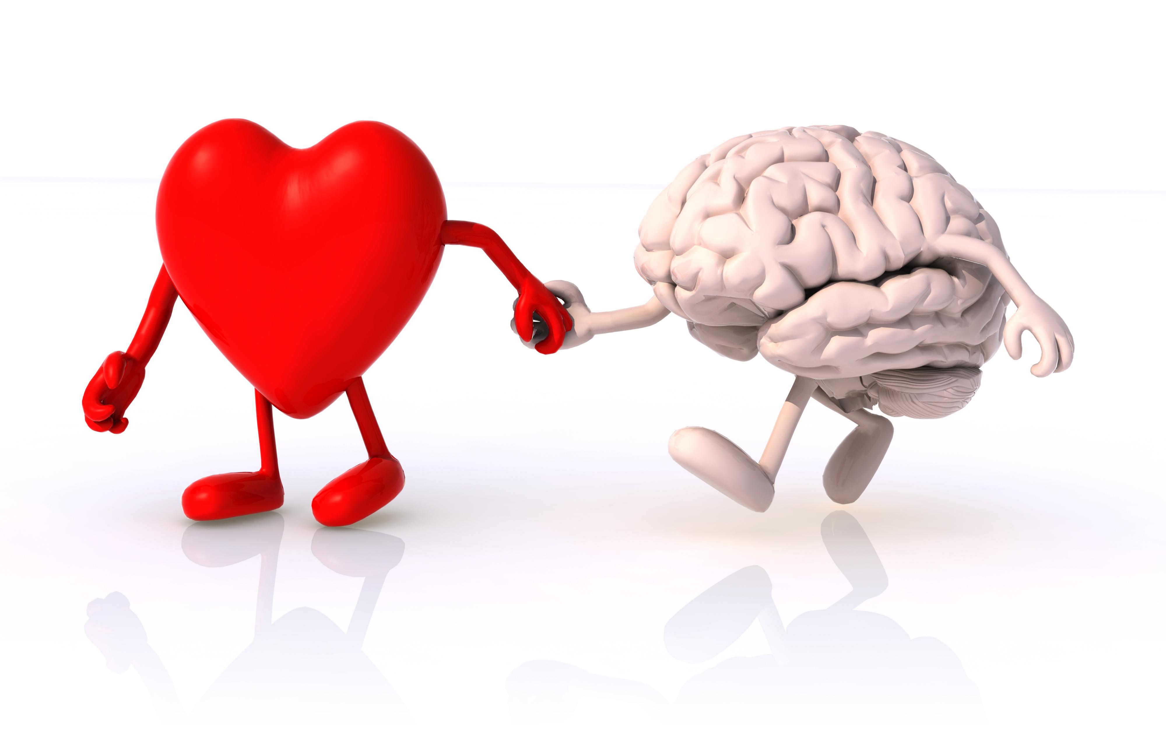 Что хорошо для сердца: хорошо и для мозга