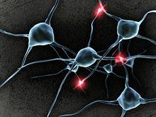 Мозг способен подавлять звук и ощущение сердцебиения