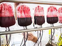 Кровь возможно производить в промышленных масштабах, показал эксперимент