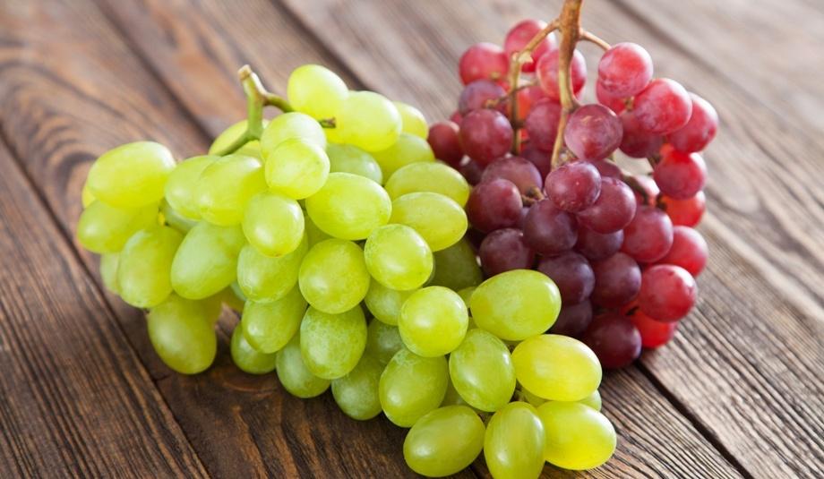 Лучшая пора для посадки винограда