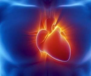 12 важных признаков того, что вам угрожает сердечный приступ
