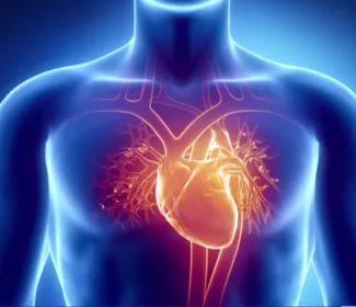 Высокие показатели удовлетворенности жизнью снижают риск ишемической болезни сердца