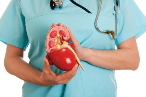Что такое пиелонефрит и какие бывают причины и симптомы?