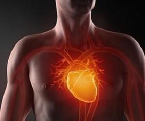 4 доступных натуральных средства для укрепления сердечной мышцы