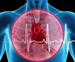 5 доступных рецептов для укрепления сердечной мышцы и профилактики инфаркта
