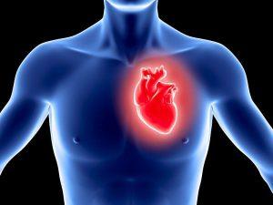 Инфаркт миокарда можно выявлять по слюне