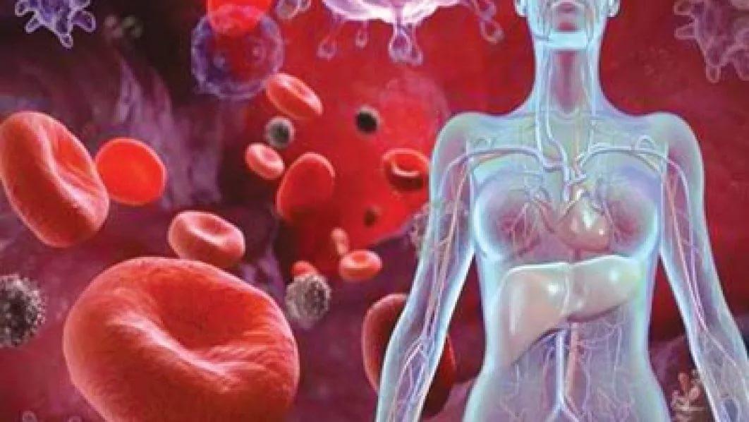 Открыт новый ген, вызывающий анемию