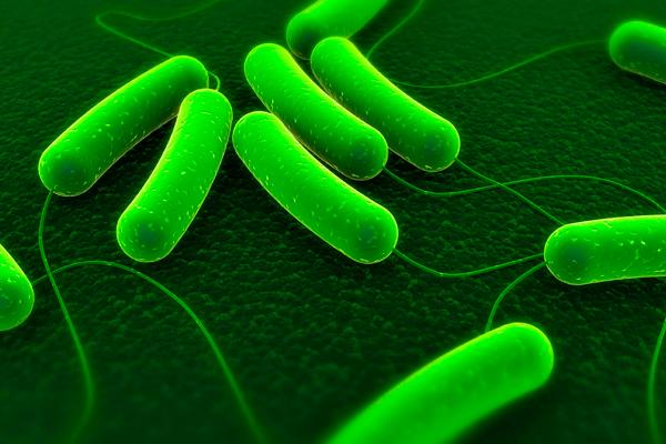 Причины, симптомы, диагностика и лечение бактериального менингита