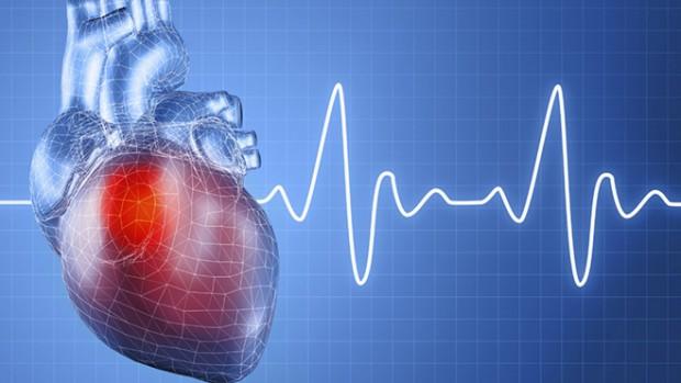 Вредные привычки, неправильное питание и игнорирование спорта приводят к развитию болезней сердца