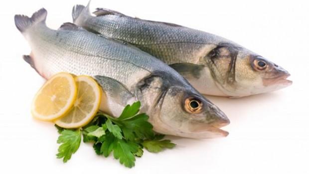 Рыбы помогут врачам определить риск возникновения инфаркта у человека
