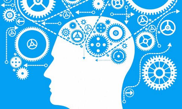 Мерцательная аритмия снижает мозговые функции у больных