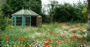 Многоцветье в саду конца лета и осени