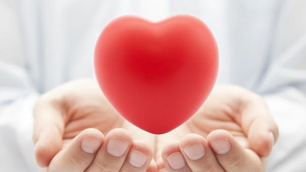 Ученые обнаружили вкусовые рецепторы в сердце