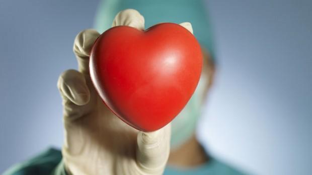 Противораковое средство может способствовать регенерации сердечной ткани