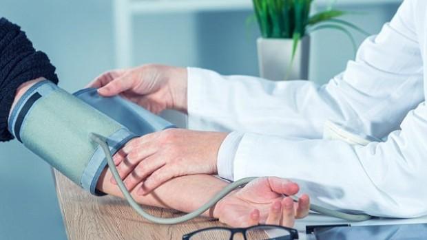 Сосновая кора поможет снизить кровяное давление