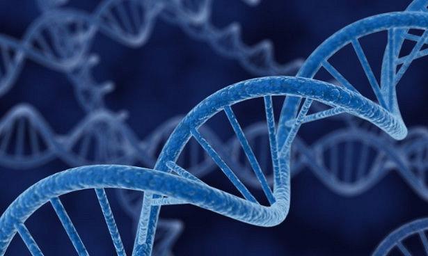 Причиной гипертонии может быть генная мутация