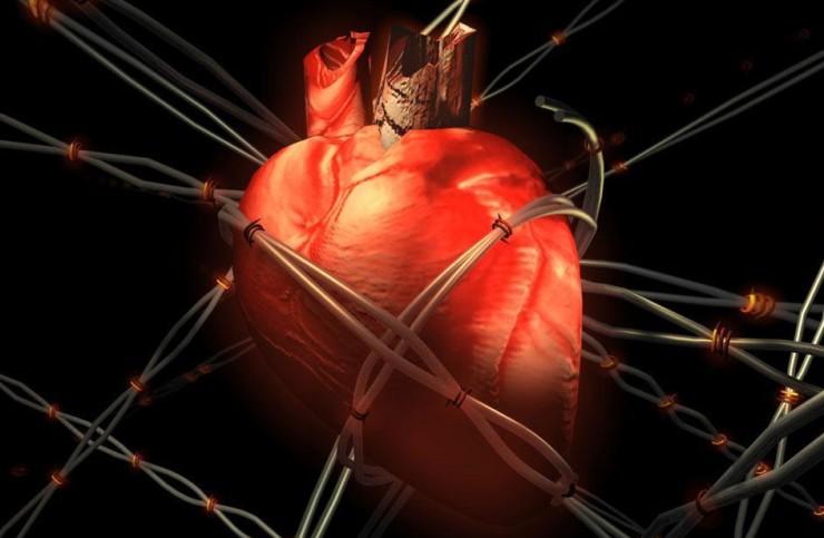 Медики назвали привычки, которые убивают сердце