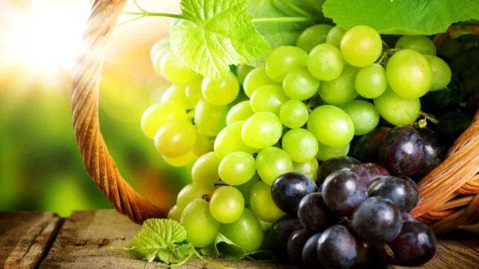 Какие растительные компоненты полезны для снижения давления
