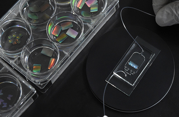 Изобретен «сердечный чип», способный менять цвета