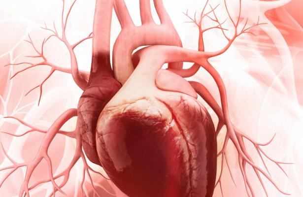 Заболевания мышц могут вызывать мнимый инфаркт
