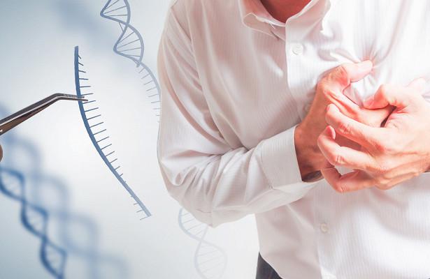 Последствия инфаркта миокарда предложили лечить генной терапией